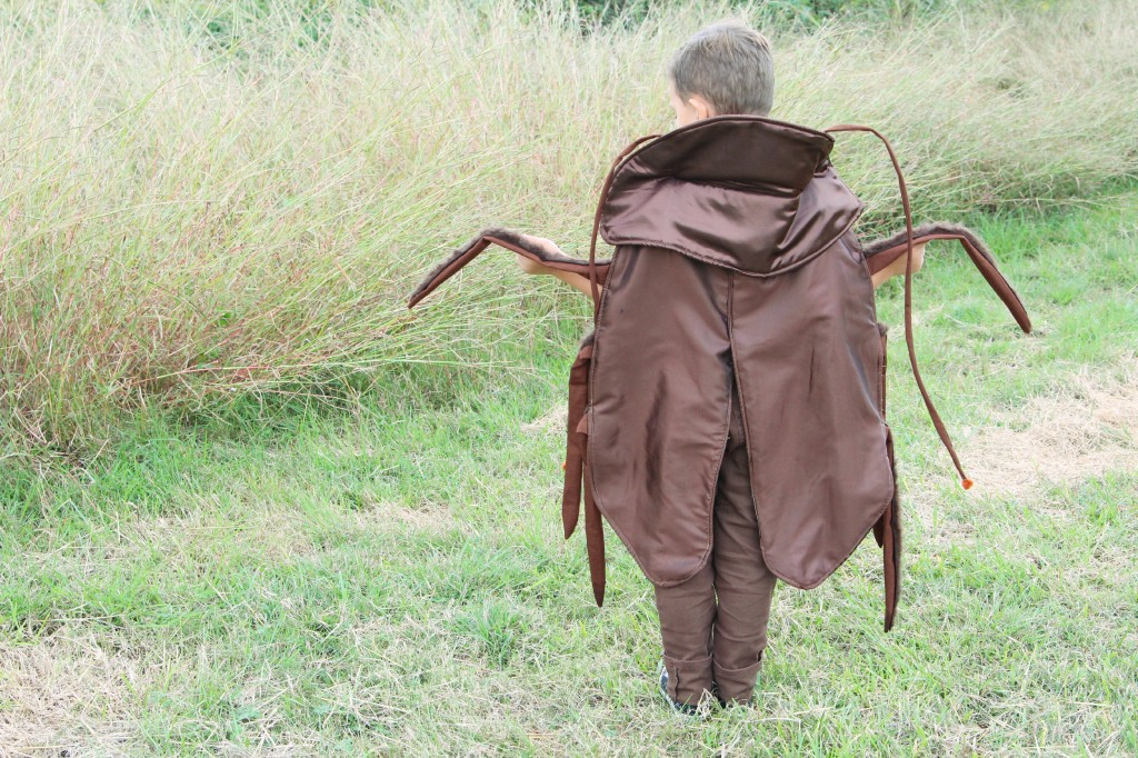 roach costume