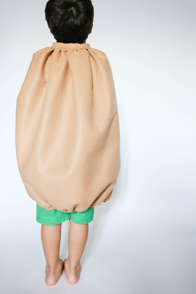 diy kiwi costume